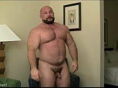 Joe Muscle Bear
